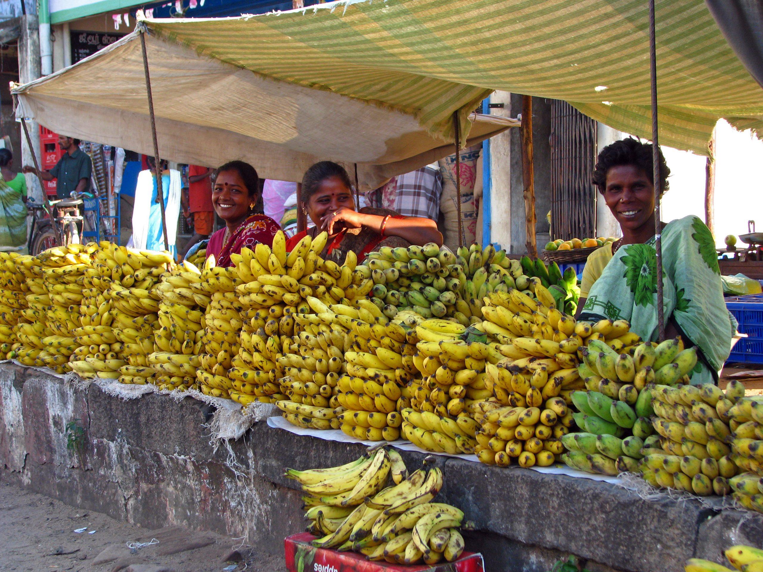 india banano