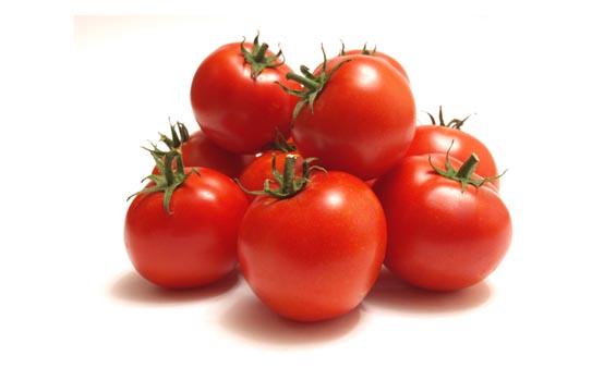 tomato european