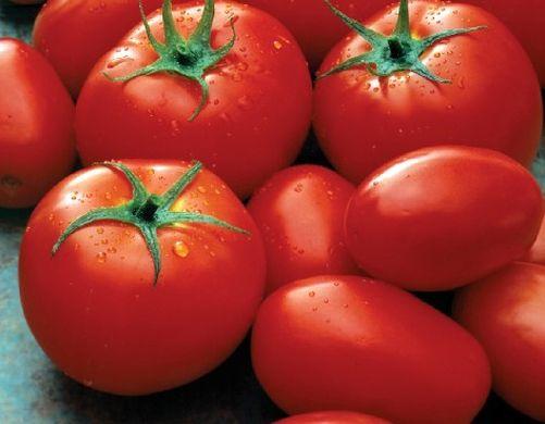 tomato mexico