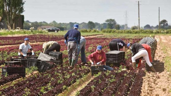eu farmers