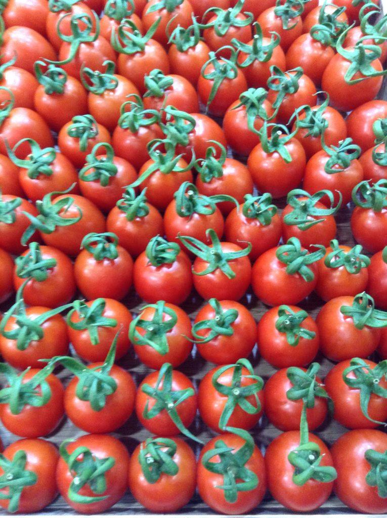 tomatoes azer