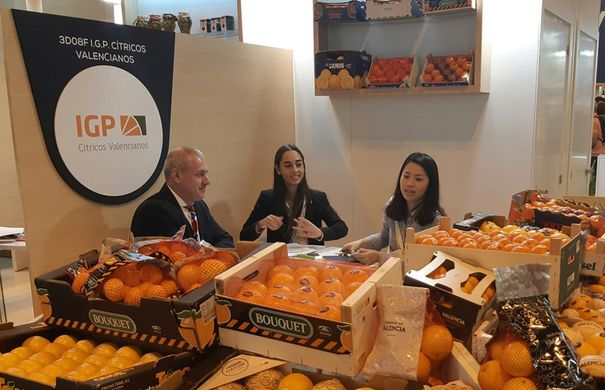 Chinese importers begin to recognise Valencian Citrus