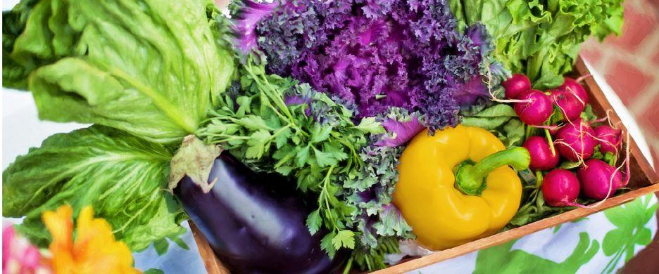 Chilean organic exports to EU soar past 2017 levels