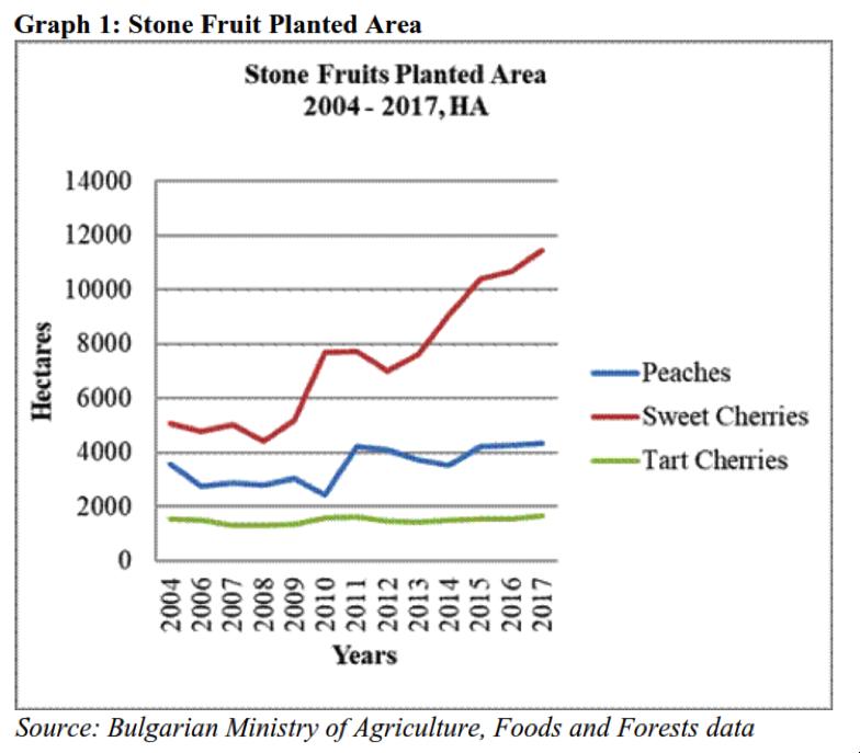 Bulgaria's stone fruit production rises 20%