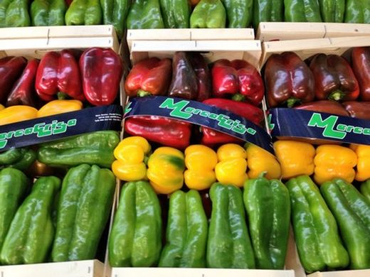 Murcia's pepper production continues to grow at 5% annually