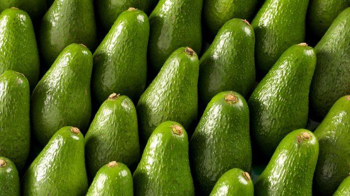 Australian avocado production booming