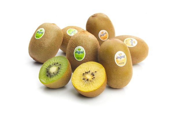 Italian kiwi production back to normal