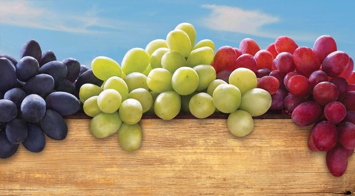 US government buys $10 million worth of Californian grapes