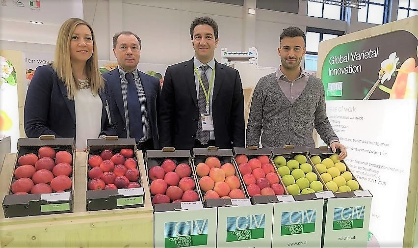 CIV's strawberry Varieties at the next 2019 Global Berry Congress in Rotterdam, 25-27 March