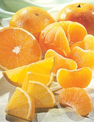 Mexico's citrus crop up 3% in 2018/19