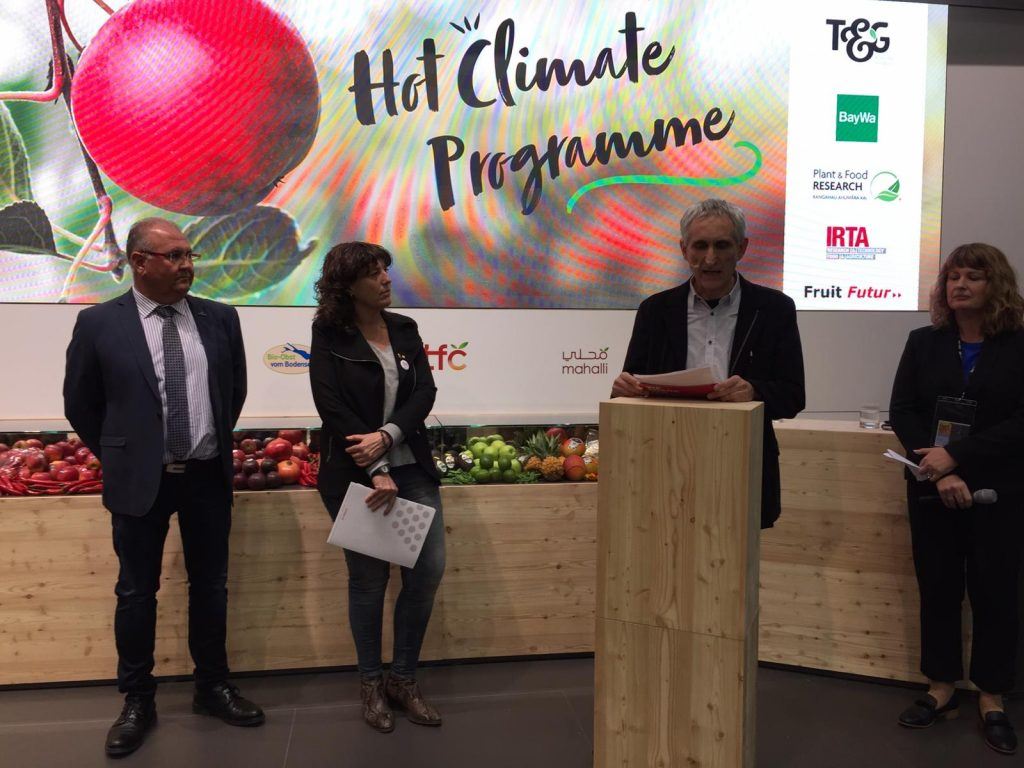 Poma de Girona develops apples for warmer conditions