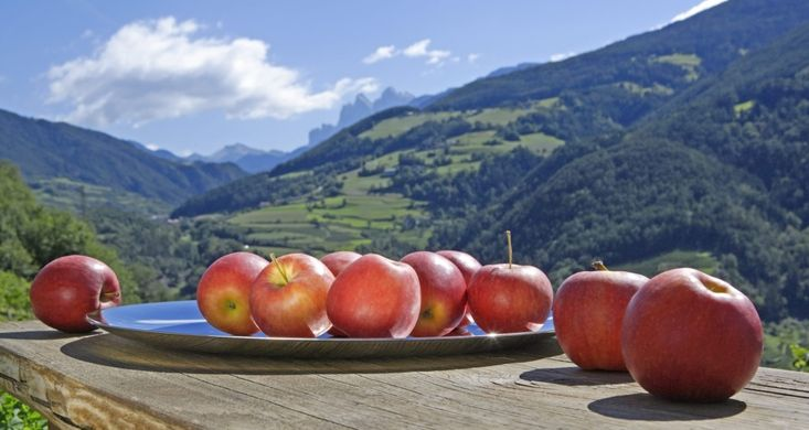 Large EU apple crop puts pressure on prices