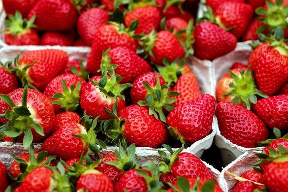 https://www.eurofresh-distribution.com/news/consumer-dissatisfaction-leads-slump-italys-strawberry-sales
