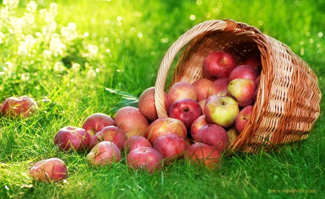 First shipments of Posy apple arrive in China