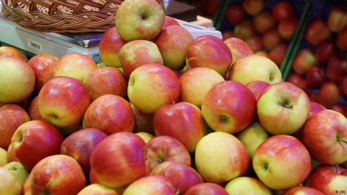 Russia's apple crop projected to break 1.5 million-ton barrier