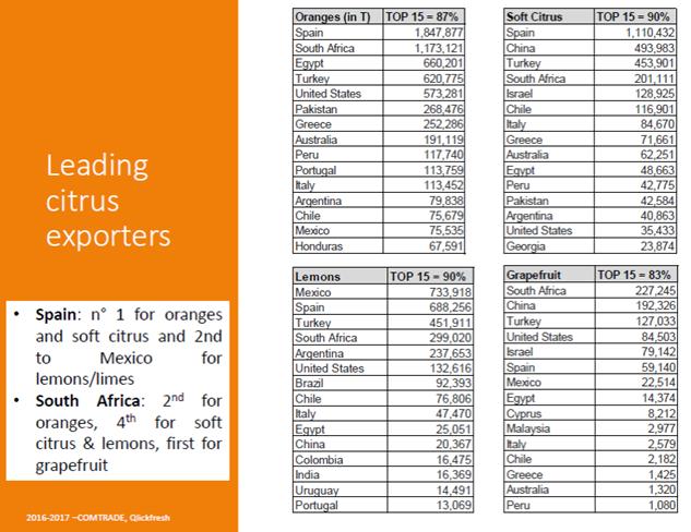 Citrus Summit South Africa: Freshfel Europe General Delegate presented global outlook for citrus