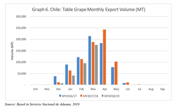 Chilean table grape production falls along with exports