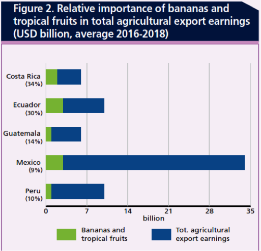 Latin American banana exports worth $5.6 billion