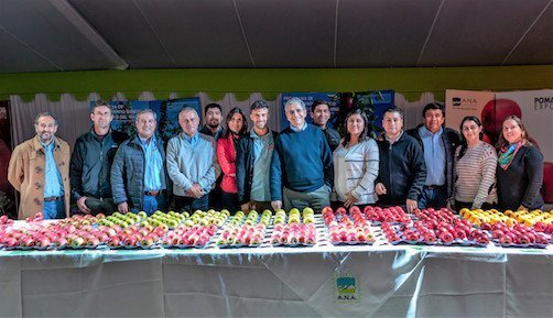 """The CIV represented by its Variety Manager """"Marco Bertolazzi"""" as international guest at the seventh edition of PomaExpo 2019 Chile"""