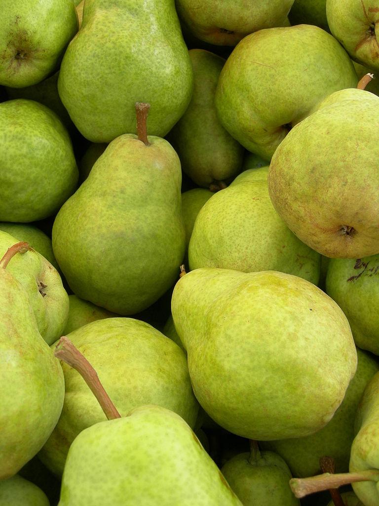 Italian pear crop decimated