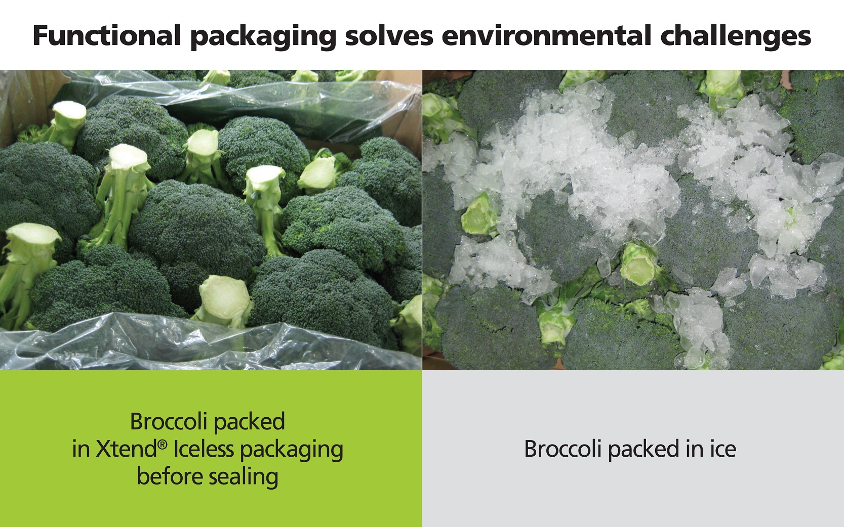 Smart packaging enhances food safety and security
