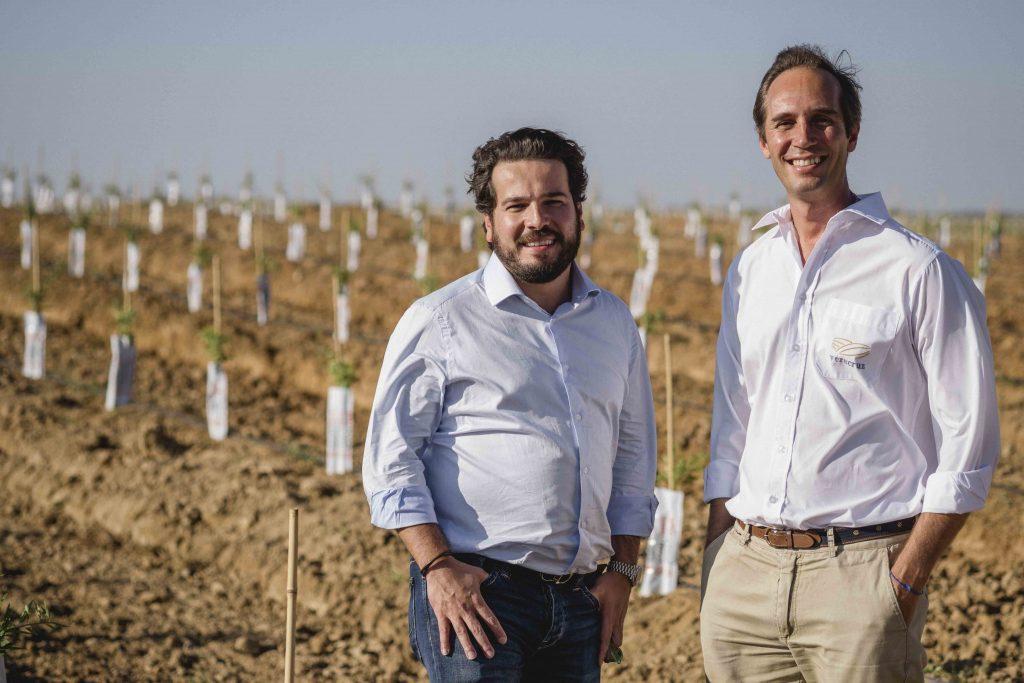 Veracruz Launches a mega almond plantation in Portugal, a €50 million investment