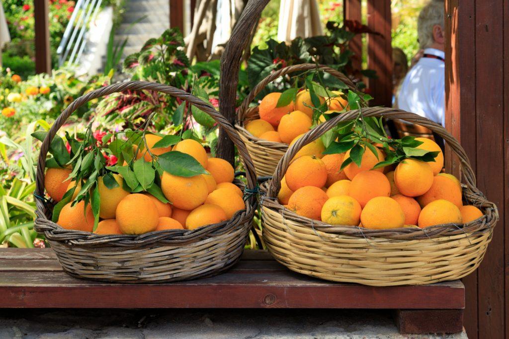 Bumper orange crop in store