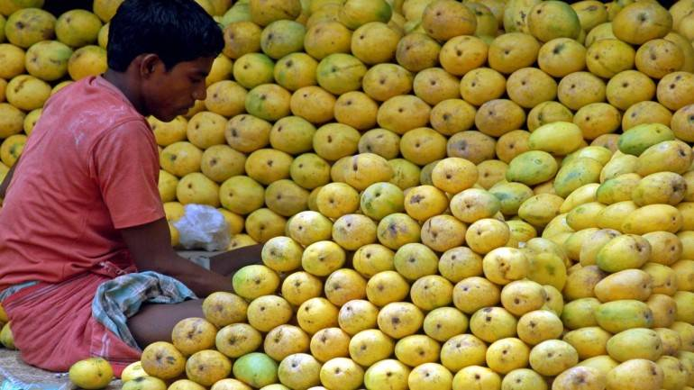 First Indian mangoes shipped to Europe by sea
