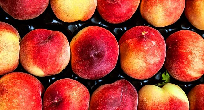 5% increase in Turkey's peach and nectarine crop