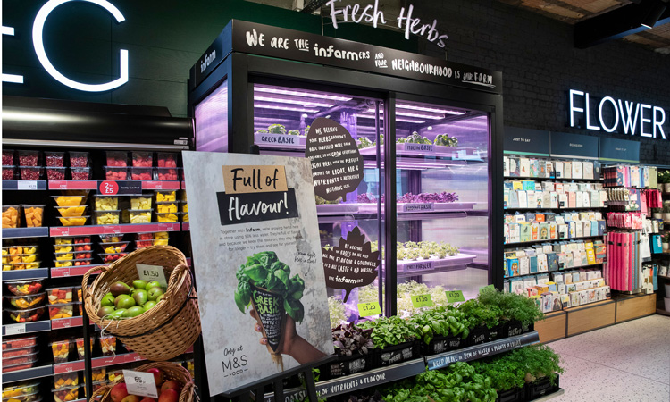 Marks & Spencer is now offering in-store grown fresh herbs