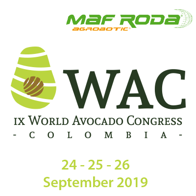 Colombia to surprise the world with the IX edition of the World Avocado Congress