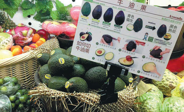 China's retail sales of avocados up 72%