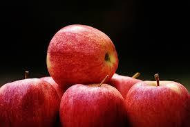 EU apple crop contracts 19%