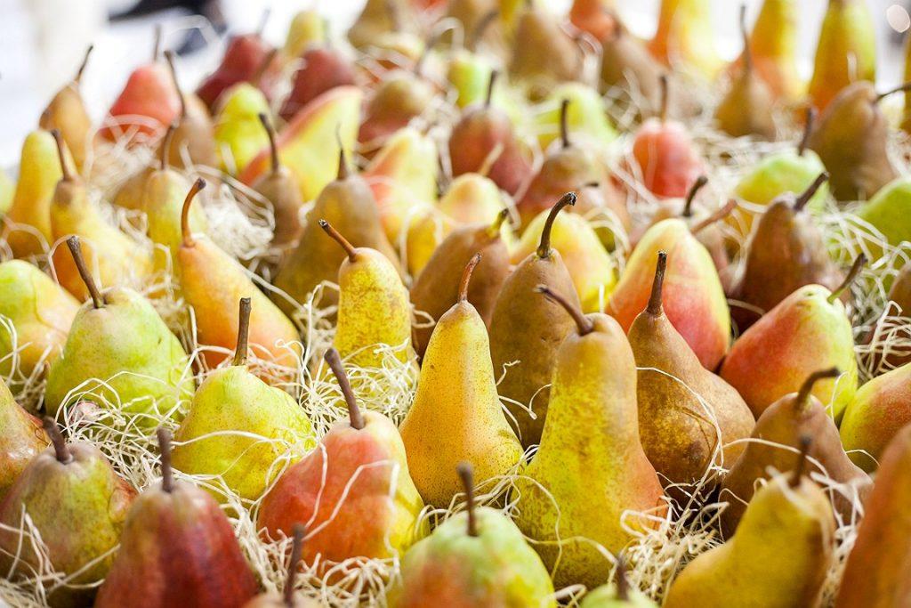 EU pear crop shrinks 13%