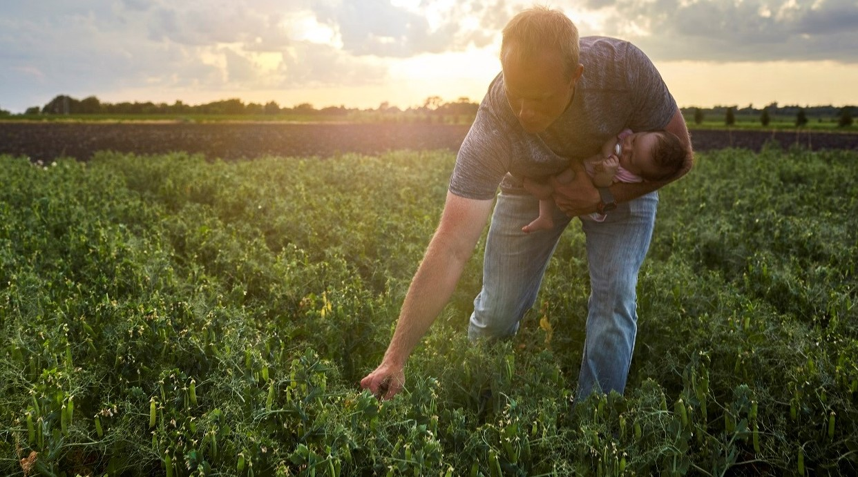Regenerative Agriculture: Organic farmer in field, credit photo: Whole Foods Magazine