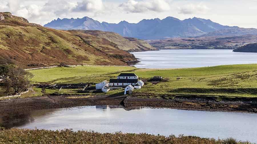 New studies in Scotland into sustainable crop combinations