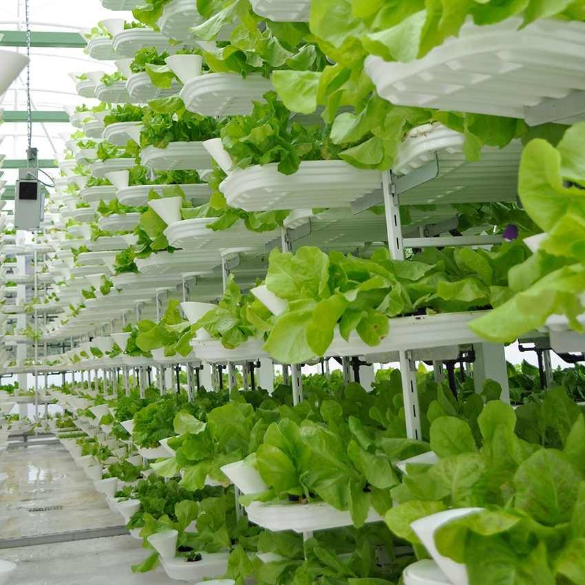 Urban vertical farming facility to be built in Australia, Credit:Valcenteu, Wikipedia