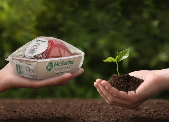 Biopac, McGarlet introduces completely compostable packaging