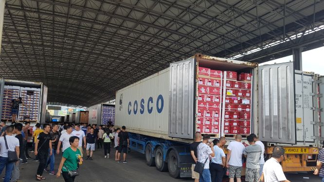 Chinese fresh produce imports continue to rise