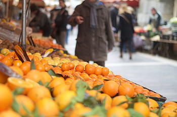 Russia imposes temporary ban on Chinese citrus imports