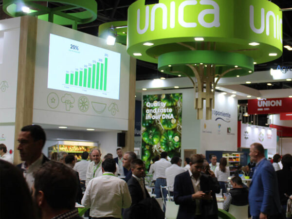 UNICA becomes first Andalusian cooperative to obtain AOP recognition