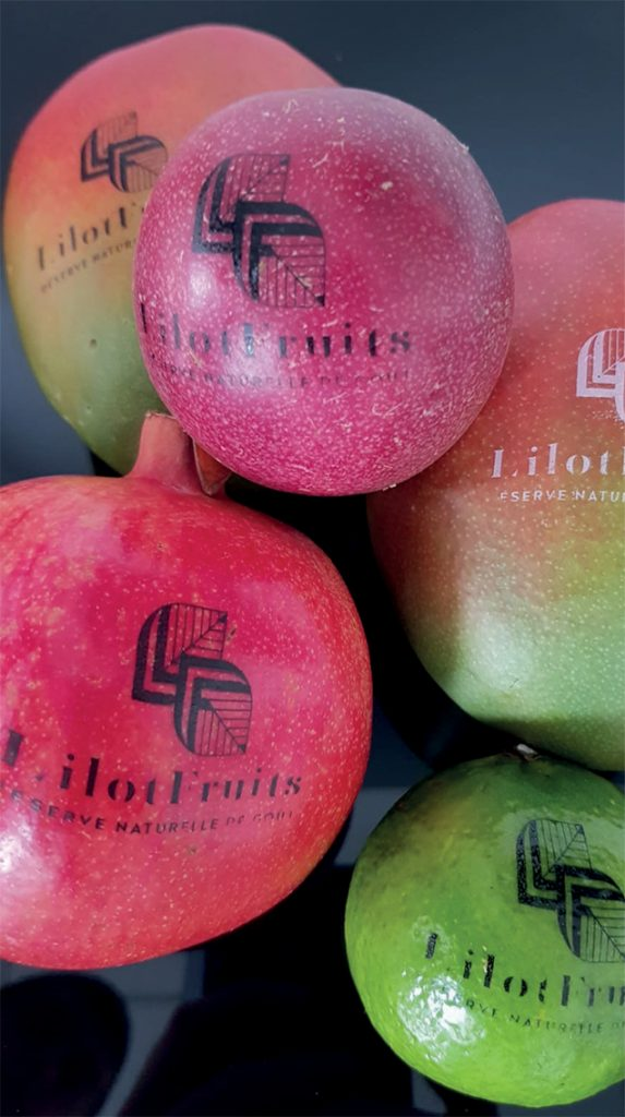 Exotic fruit and vegetable printed