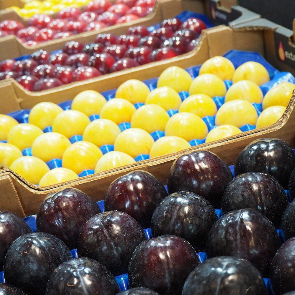 Spanish stone fruit sector under immense pressure, credit. Alexandra Sautois, Eurofresh Distribution