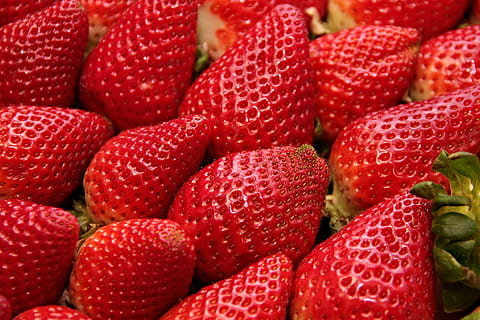 Spain's berry sector calls for help from unemployed