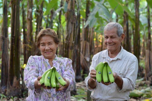 Ecuador convinces with fruity variety