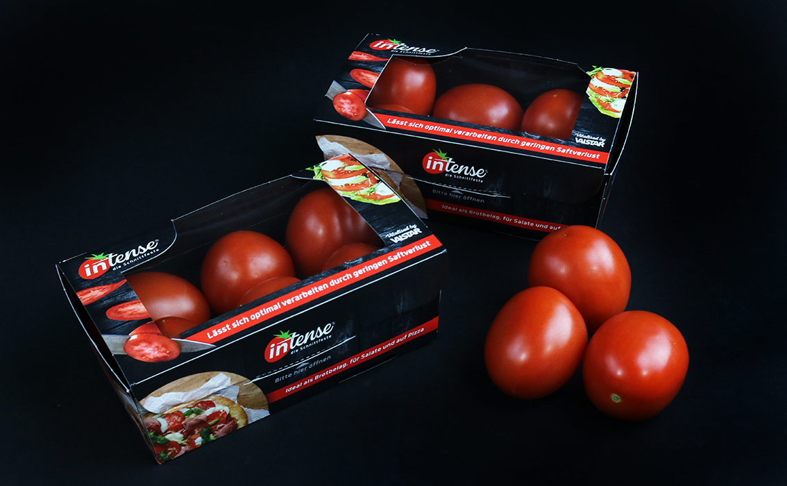 Increasing interest in the German market for the Intense tomato, credit: Valstar Holland B.V.