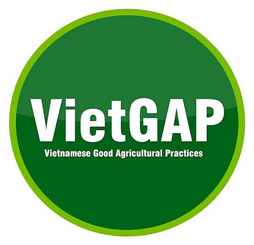 Safety accreditation for Vietnamese vegetables