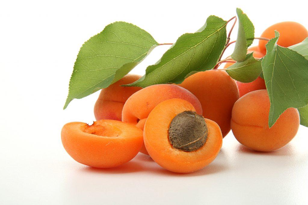 EU apricot crop plummets in 2020