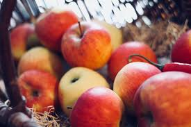 Chile's apple exports continue to dwindle