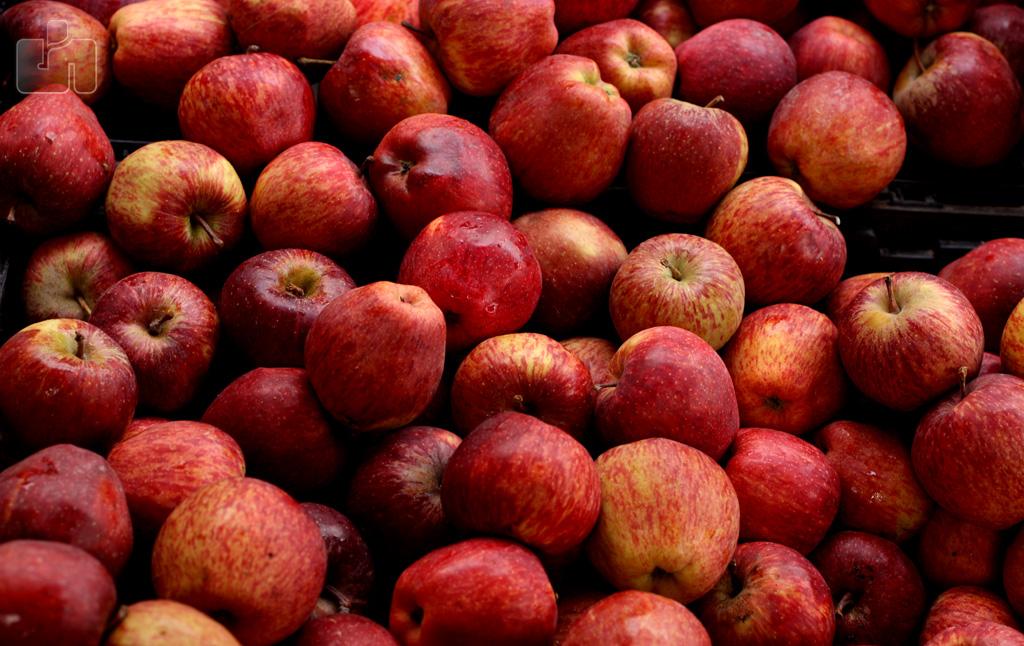 Kashmir Valley cold storage unit for apples becomes coronavirus hotspots